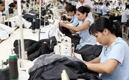 Tổng giám đốc Vinatex: Vải sẽ là sản phẩm cạnh tranh của tập đoàn
