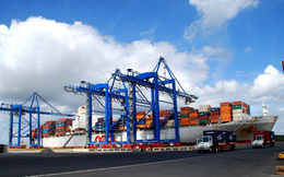 Tiếp tục thí điểm bình ổn giá dịch vụ xếp dỡ container tại cảng Cái Mép-Thị Vải