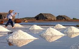 Còn tồn khoảng 167.324 tấn muối