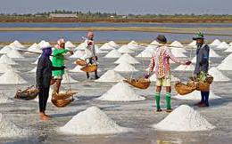 TP HCM: Hỗ trợ tiêu thụ muối tồn đọng cho diêm dân