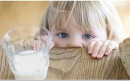 Muốn truy thu thuế 8 doanh nghiệp sữa, Tổng cục Hải quan PHẢI có 1 trong 12 văn bản sau