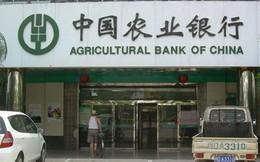 """Ngành ngân hàng Trung Quốc bắt đầu """"thấm đòn"""" kinh tế suy giảm"""