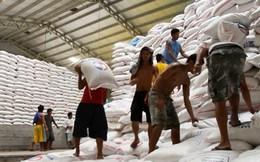 Philippines chưa có kế hoạch nhập khẩu thêm gạo trong năm nay