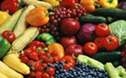 Tìm cách tiêu thụ 4 nhóm nông sản chủ lực
