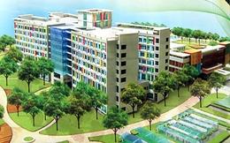 Đẩy nhanh tiến độ triển khai dự án Bệnh viện Nhi Hà Nội