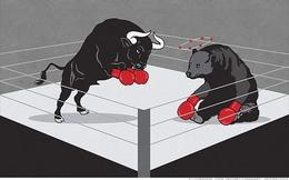 """Cổ phiếu đáng chú ý ngày 25/6: SHN tăng trần sau 4 phiên giảm, PVB """"ngược dòng"""" dầu khí"""