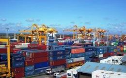 Chính phủ chỉ đạo xử lý tình trạng hàng hóa tồn đọng tại cảng biển