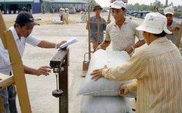 Thu mua tạm trữ lúa, gạo vụ Đông Xuân 2014 - 2015