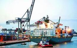 Thanh tra việc thu phụ phí của hãng tàu nước ngoài