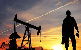 Dự báo sản lượng dầu của Mỹ có thể đình trệ trong tháng này