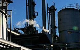 OPEC: Giá dầu sẽ chạm ngưỡng 80 USD mỗi thùng vào năm 2020