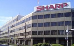 Sharp bán trụ sở, đóng cửa nhà máy sản xuất tivi LCD