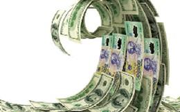 Những yếu tố tác động đến tỷ giá năm 2015