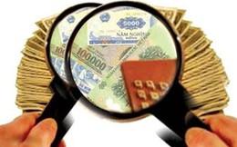 IDI dự kiến phát hành 98 triệu cp chào bán cho cổ đông hiện hữu tỷ lệ 1:1