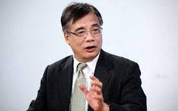 """Ông Trần Đình Thiên: """"Hạm đội thuyền thúng"""" thì không thể hội nhập"""