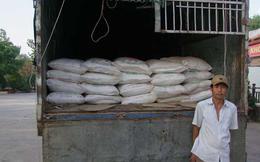 Bắt giữ 2 vụ chuyển hơn 16 tấn đường cát nhập lậu