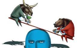 """Cổ phiếu ngân hàng """"bùng nổ"""", Vn-index tăng hơn 4 điểm"""