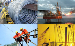 3 kịch bản cho sự phát triển của các tập đoàn kinh tế nhà nước