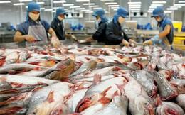 Gạo và thủy sản Việt Nam cần làm gì để đón cơ hội từ TPP?