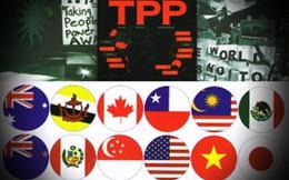 Trình Quốc hội phê chuẩn TPP vào kỳ họp đầu tiên Quốc hội XIV