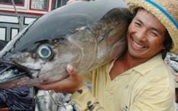 Hoa Kỳ tiếp tục là thị trường nhập khẩu thủy sản hàng đầu của Việt Nam