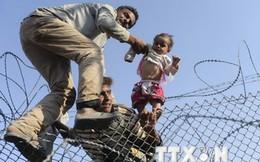Palestine tuyên bố sẵn sàng tiếp nhận người tị nạn về quê