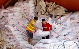 Chính phủ Philippines họp khẩn về nhập khẩu gạo do mất mùa