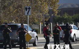 Hàng loạt trung tâm mua sắm ở 3 bang của Mỹ bị đe dọa đánh bom