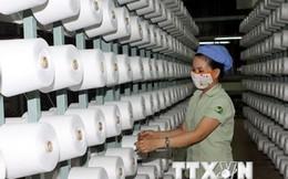 Đầu tư 120 tỷ đồng xây dựng nhà máy dệt, nhuộm ở Bình Phước