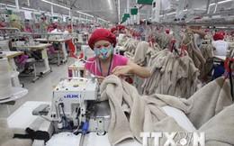 Xuất khẩu của Hà Nội tăng mạnh trong 3 tháng cuối năm