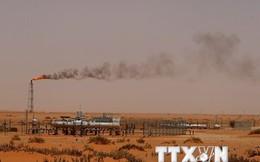 Các nước GCC sắp nhóm họp lần đầu kể từ đợt giảm giá dầu gần nhất