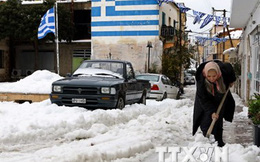 Các định chế tài chính lớn đối phó khả năng Hy Lạp rời Eurozone