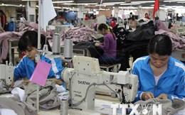 EIU: Kinh tế Việt Nam năm 2015 tiếp tục đà phục hồi mạnh mẽ