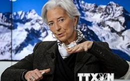 """IMF: Kinh tế toàn cầu vẫn """"dễ tổn thương và quá mong manh"""""""