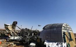 Nga xác định các nhóm đứng sau vụ nổ máy bay A321 ở Ai Cập