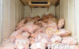 Các trang trại lớn sẵn sàng hỗ trợ khởi kiện vụ nhập thịt đông lạnh