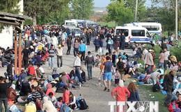 Croatia lo ngại hơn 20.000 người di cư đổ vào nước này