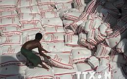 Myanmar khôi phục hoạt động xuất khẩu gạo vào giữa tháng 9