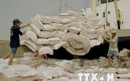 Thái Lan dự kiến sẽ xuất khẩu 10 triệu tấn gạo vào năm 2016