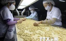 EIU: Môi trường kinh doanh tại Việt Nam tiếp tục được cải thiện