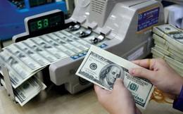 """Giá USD ngân hàng vẫn """"rơi tự do"""""""