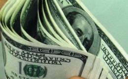 USD tăng đột biến, doanh nghiệp thuỷ sản lao đao