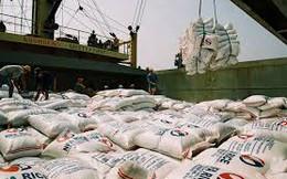 Xuất khẩu gạo 2015 sẽ chịu cạnh tranh khốc liệt