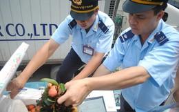 Bộ Kế hoạch và Đầu tư lý giải vênh số liệu xuất nhập khẩu Việt Nam-Trung Quốc