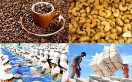 Xuất khẩu sang EAEU: Nông sản hưởng lợi, Dệt may không chủ quan