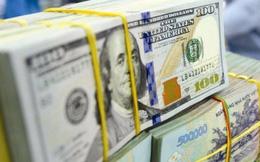 USD ngân hàng tăng vọt, tỷ giá trung tâm đã tăng gần 1% so với đầu năm