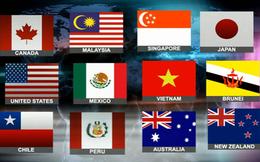 Chính phủ đồng ý ký Hiệp định TPP