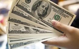 Hậu bầu cử Mỹ, đồng USD được dự báo tăng giá mạnh