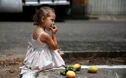 Người Venezuela ăn xoài trừ bữa