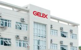 Gelex thông qua phương án phát hành 2.000 tỷ đồng trái phiếu riêng lẻ kèm chứng quyền